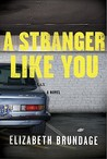 A Stranger Like You by Elizabeth Brundage
