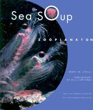 Sea Soup by Mary M. Cerullo