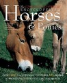 The Complete Illustrated Encyclopedia of Horses and Ponies: Authoritative Reference Care and Id Manual
