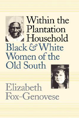 Within the Plantation Household by Elizabeth Fox-Genovese