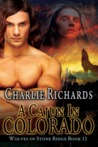 A Cajun in Colorado (Wolves of Stone Ridge, #12)