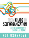 From chaos to self organization: Growing effective software teams