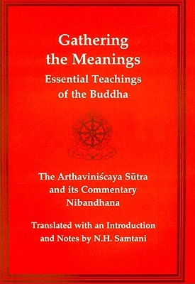 Gathering the Meanings by N. H. Samtani