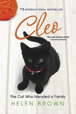 CLEO: The Cat Who Mended a Family