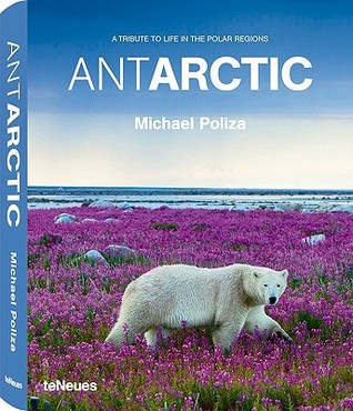 Antarctic - Life in the Polar Regions by Michael Poliza