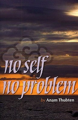 No Self No Problem: Awakening to Our True Nature