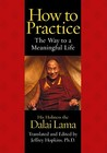 How to Practice by Dalai Lama XIV