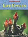 Life Cycles (Living Processes)