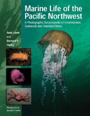Marine Life of the Pacific Northwest by Andy Lamb