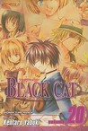 Black Cat: A Carefree Tomorrow, Vol. 20 (Black Cat, #20)