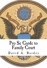 Pro Se Guide to Family Court by David A. Bardes