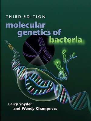 Molecular Genetics of Bacteria, Third Edition by Larry Snyder