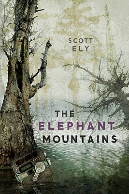 The Elephant Mountains by Scott Ely