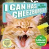 I Can Has Cheezburger?: 2012 Day-to-Day Calendar