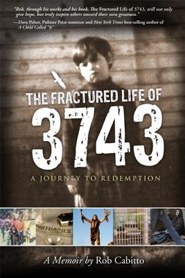 The Fractured Life of 3743 by Rob Cabitto