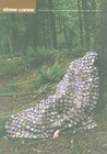 Stone Canoe A Journal of Arts and Ideas from Upstate New York, Number 4