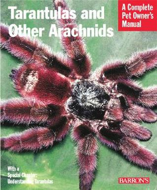Tarantulas and Other Arachnids (Complete Pet Owner