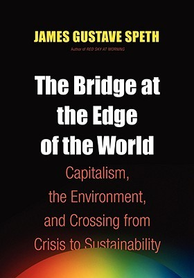 The Bridge at the End of the World by James Gustave Speth