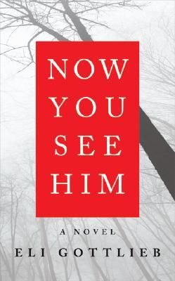 Now You See Him by Eli Gottlieb