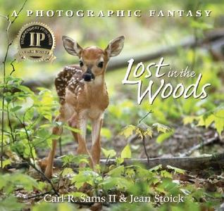 Lost in the Woods by Carl R. Sams II