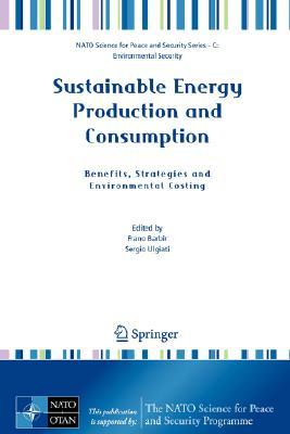 Sustainable Energy Production and Consumption by Frano Barbir