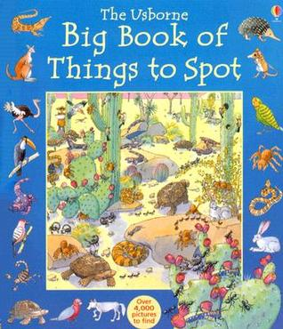 The Usborne Big Book of Things to Spot by Ruth Brocklehurst