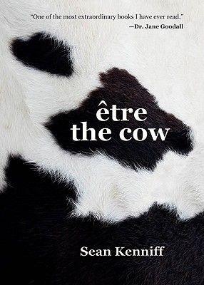 Etre the Cow by Sean Kenniff
