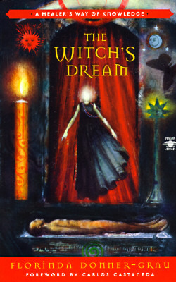 The Witch's Dream by Florinda Donner