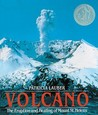 Volcano: The Eruption and Healing of Mount St. Helens