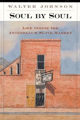 Find Soul by Soul: Life inside the Antebellum Slave Market DJVU