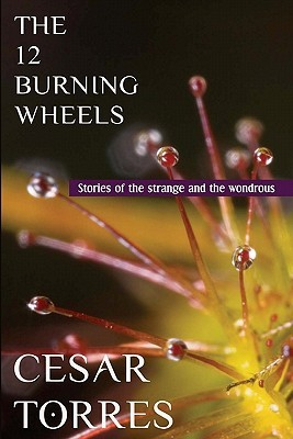 The 12 Burning Wheels by Cesar Torres