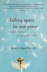 Falling Apart in One Piece: One Optimist's Journey Through the Hell of Divorce