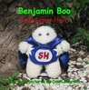 Benjamin Boo Real Super Hero by Dawn Behrens