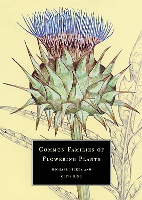 Common Families of Flowering Plants