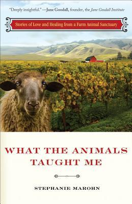 Free download online What the Animals Taught Me: Stories of Love and Healing from a Farm Animal Sanctuary CHM