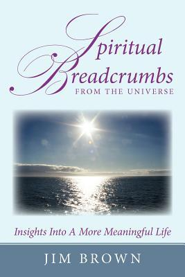 Spiritual Breadcrumbs from the Universe: Insights Into a More Meaningful Life