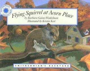 Flying Squirrel at Acorn Place