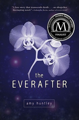 The Everafter Amy Huntley