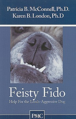 Feisty Fido by Patricia B. McConnell