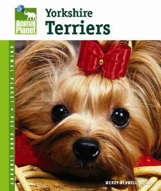 Yorkshire Terriers by Wendy Bedwell-Wilson