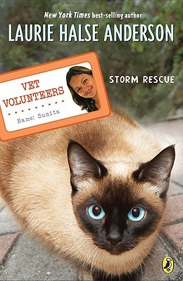 Storm Rescue Vet Volunteers 6