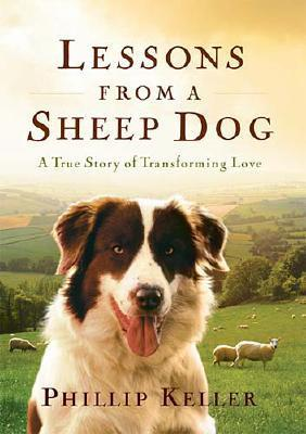 Lessons from a Sheep Dog