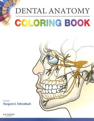 28+ [ Anatomy And Physiology Coloring Workbook Chapter 7 ...