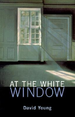 At the White Window by David     Young