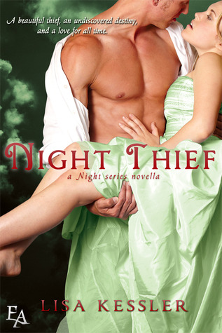 Night Thief Book Cover