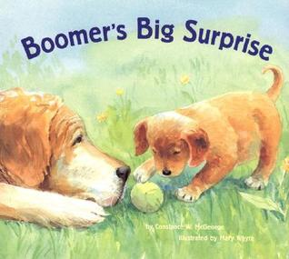 Boomer's Big Surprise by Constance W. McGeorge