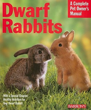 Dwarf Rabbits: Everything about Selection, Care, Nutrition, and Behavior
