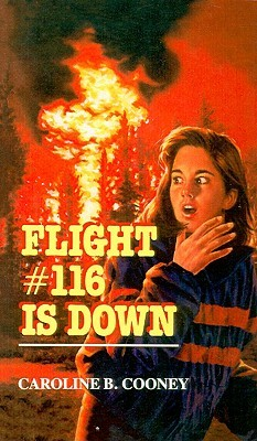 Flight #116 Is Down