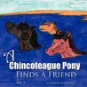 A Chincoteague Pony Finds A Friend