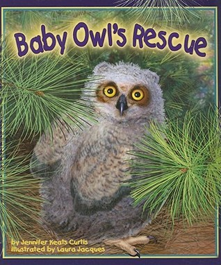 Baby Owl's Rescue by Jennifer Keats Curtis